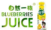 广东楠星大健康食品有限公司